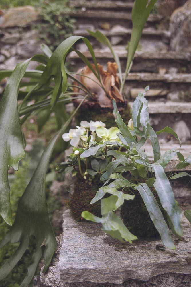 style-shooting-rocchettanervina-tizianagallofotografa-organico-botanico-91.jpg