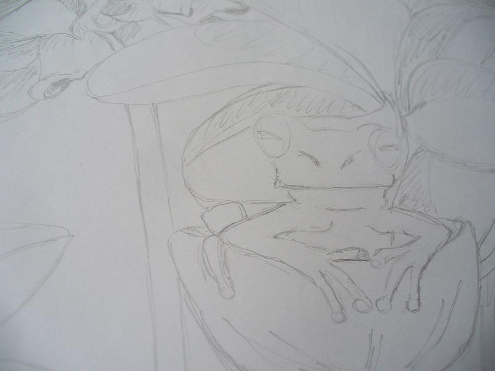 frog sneezerville