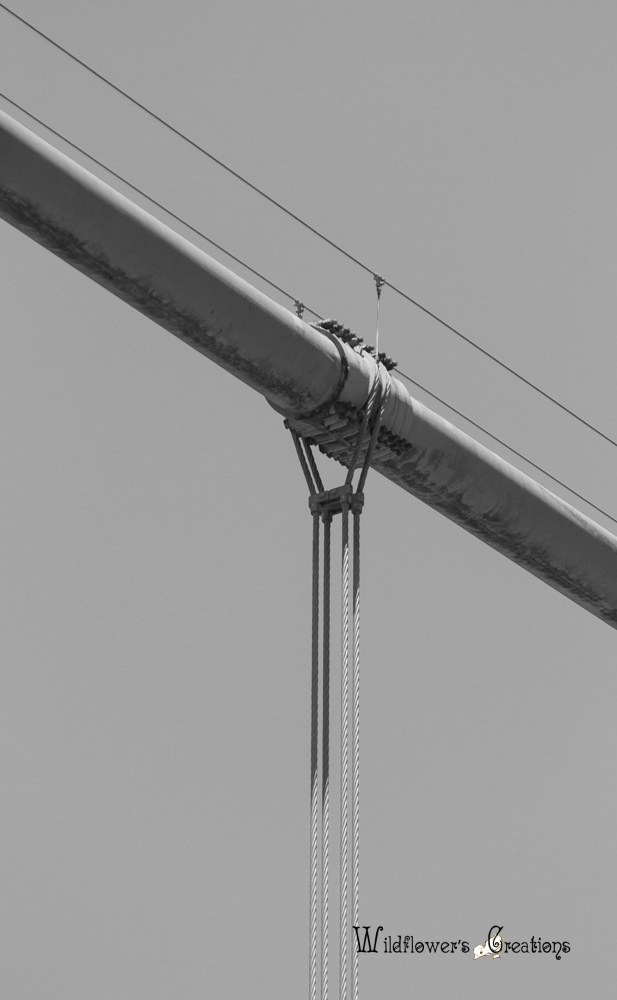 GGB - Bridge - 2012-05 detail1.jpg