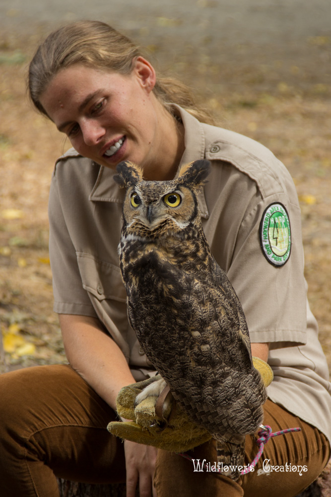 2013-08-17 workshop - Horned Owl & Handler.jpg