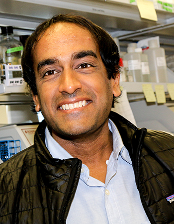 Dr. Satish Pillai