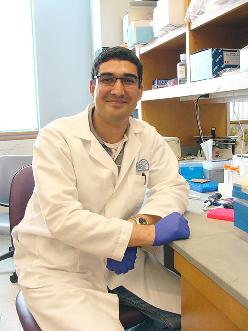 Dr. Luis Agosto