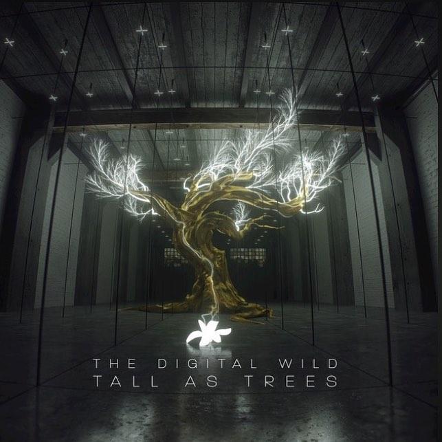 digital wild album.jpg
