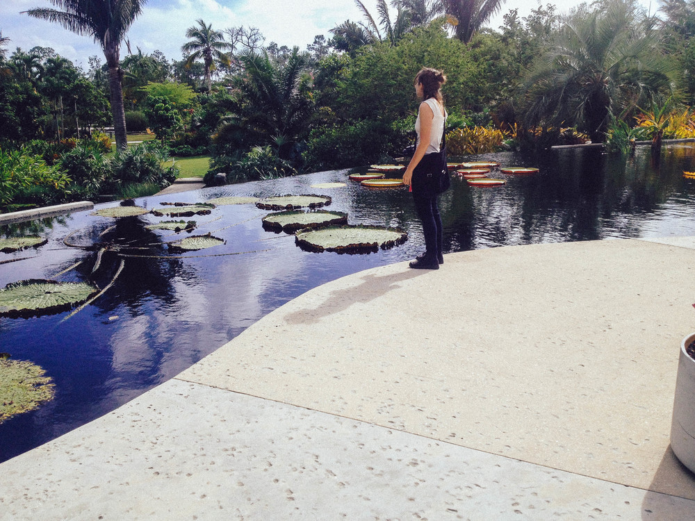 Theinfinity pool filled with monstrous Victoria Amazonica water lily pads.