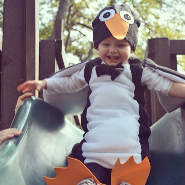 My little penguin!