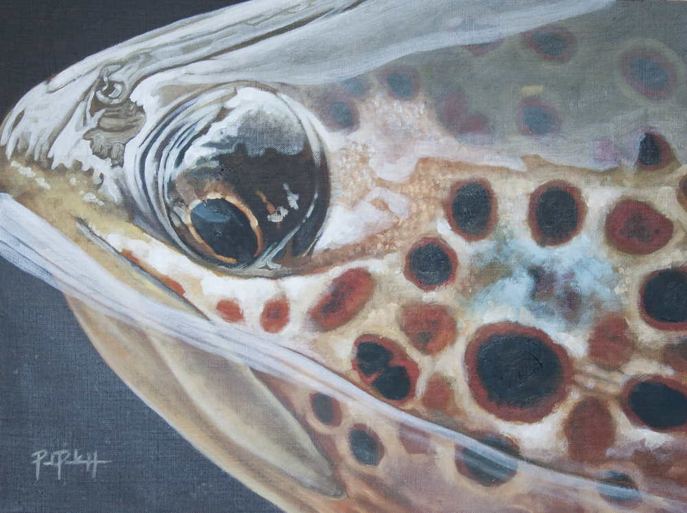 """Brown Trout Reflection"""