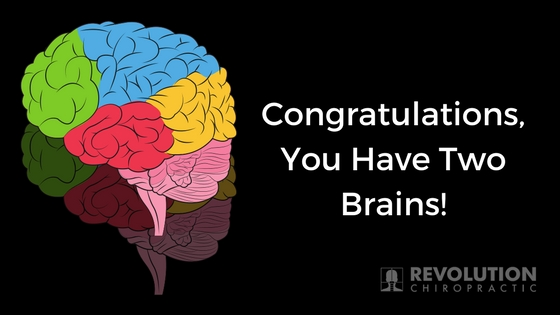 Congratulations, You Have Two Brains!.jpg