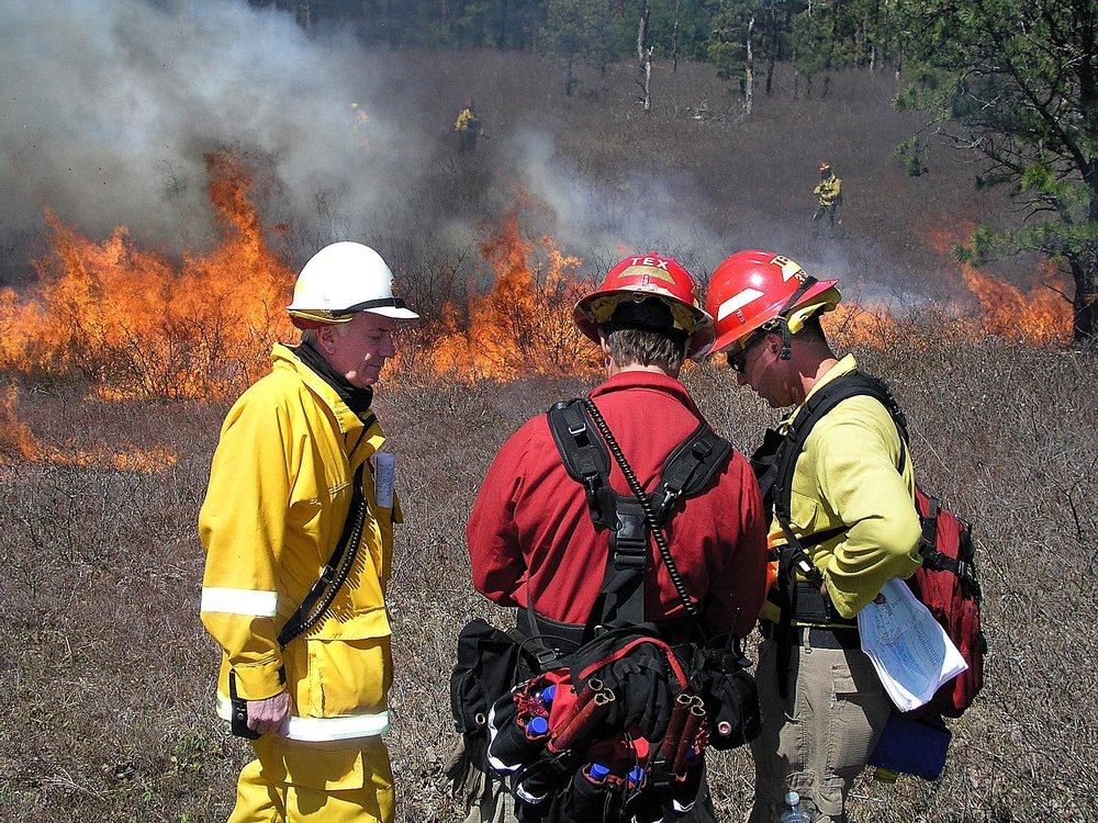 Myles Standish State Forest controlled burn