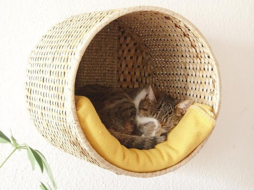 DIY-cat-bed-520x388.jpg