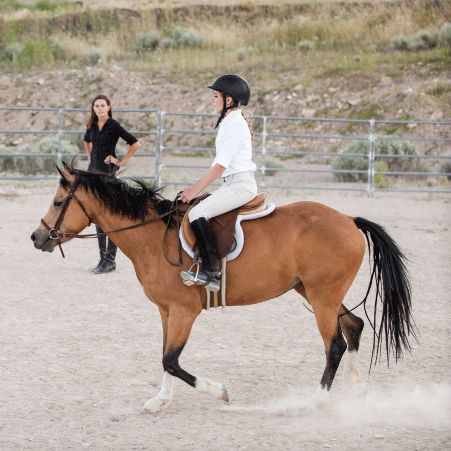 Dressage with pony viva and equestrian trainer. - Valley View EQ - Payson, Utah.