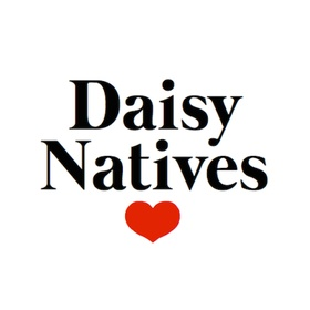 daisy_natives