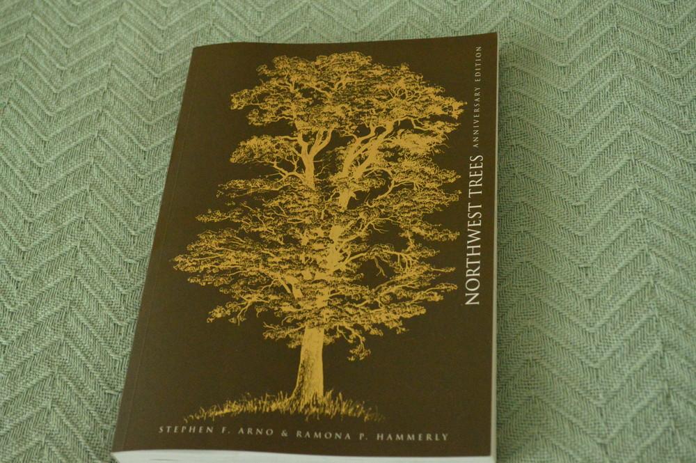 nw_trees.jpg