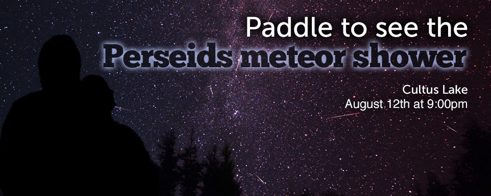 Meteor shower Banner.jpg
