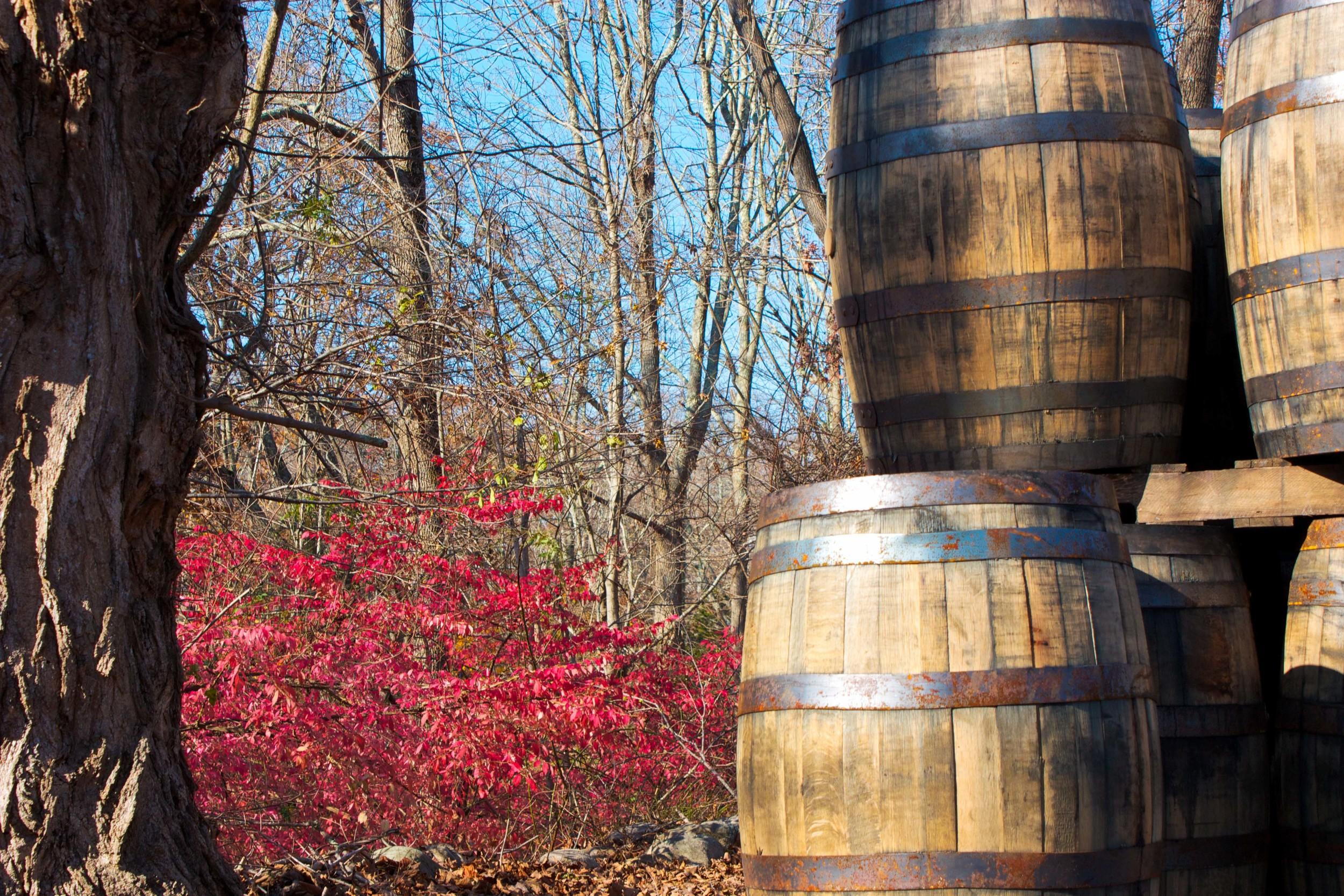 alue sunglasses cider barrels