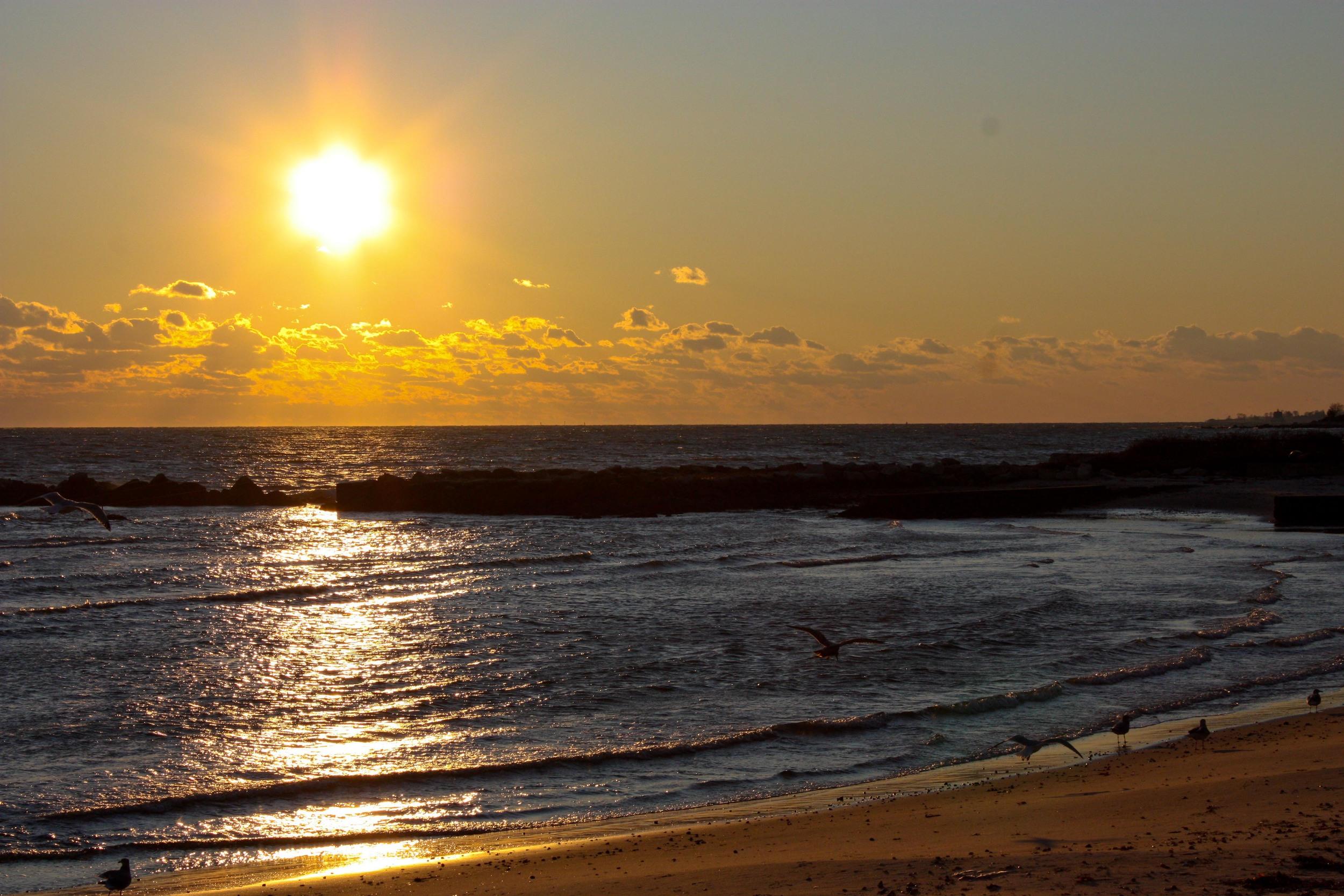alue optics hq sunset
