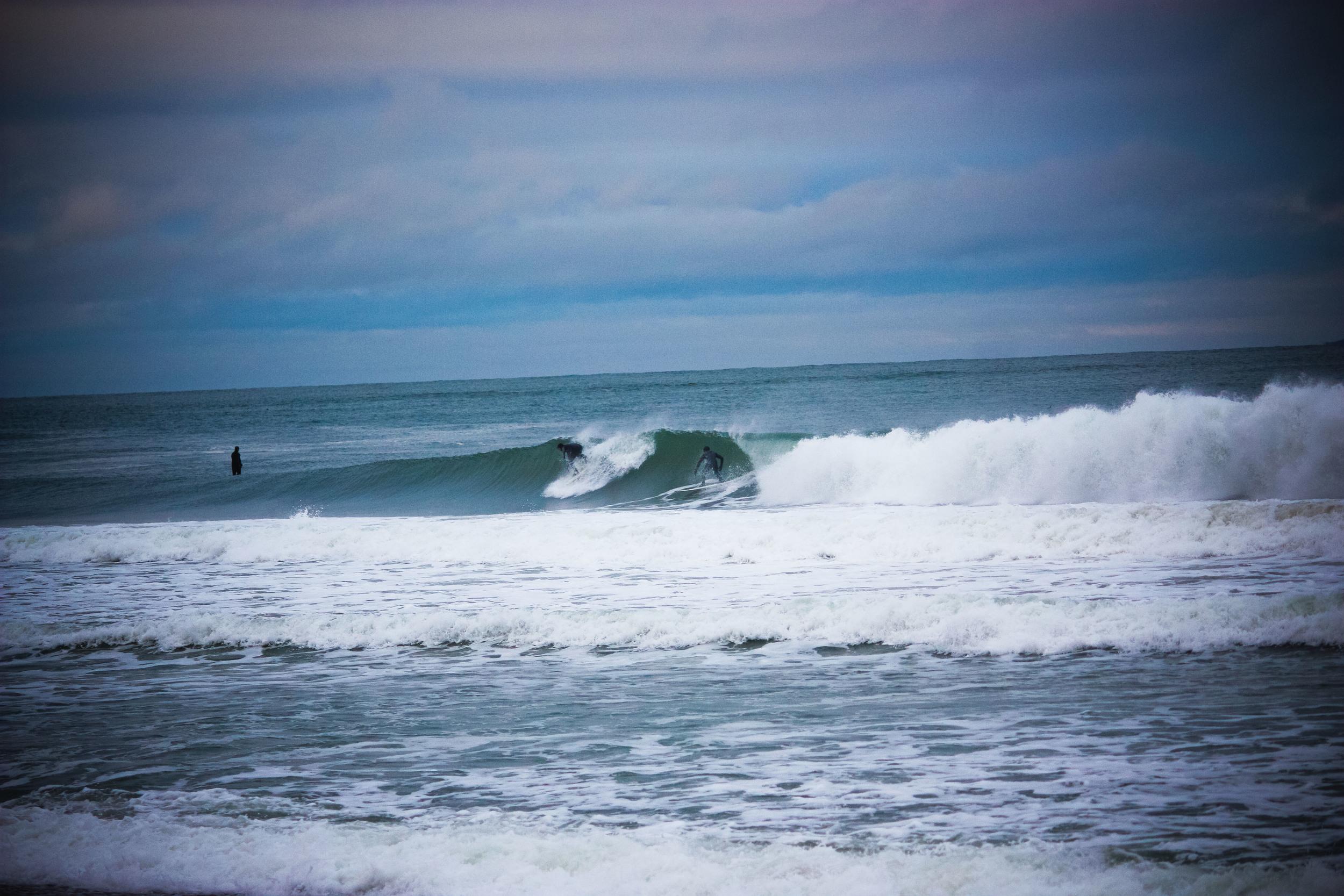 alue optics surf jan 12