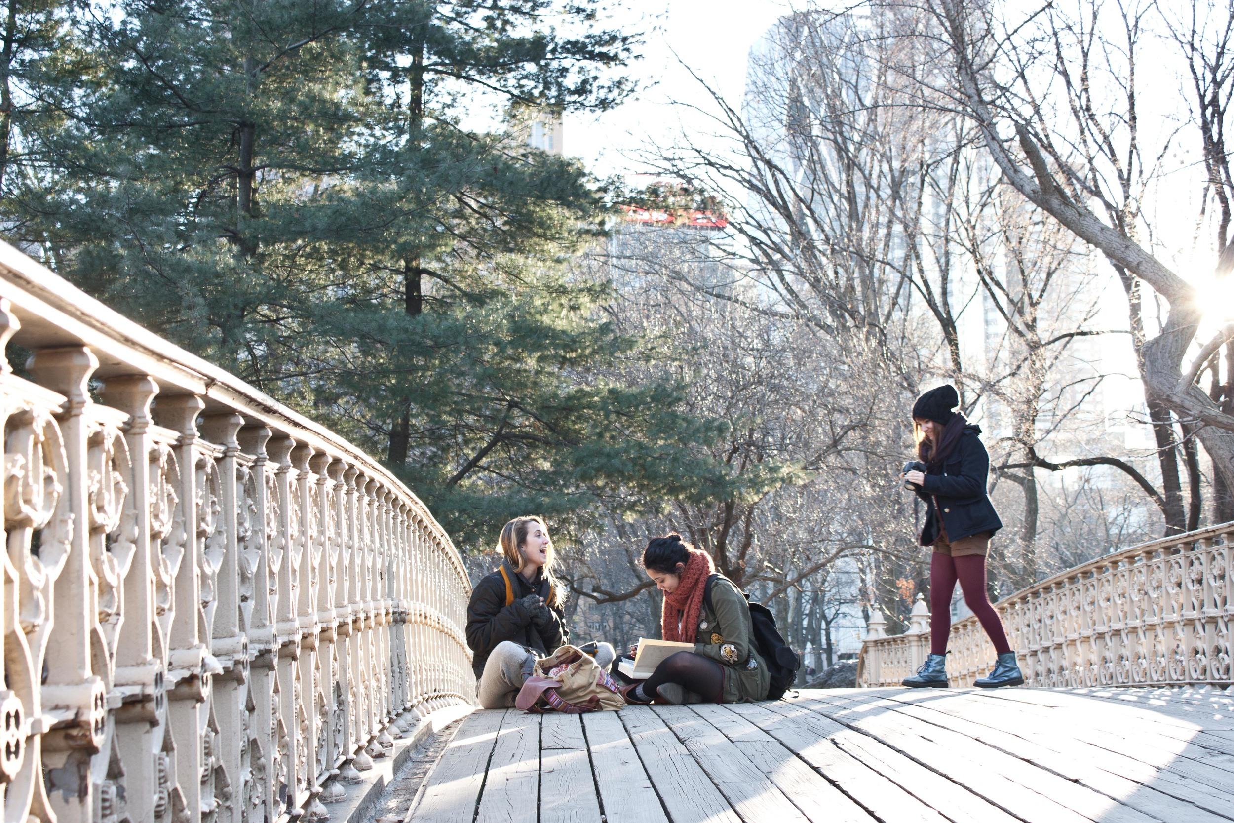 alue optics central park bridge