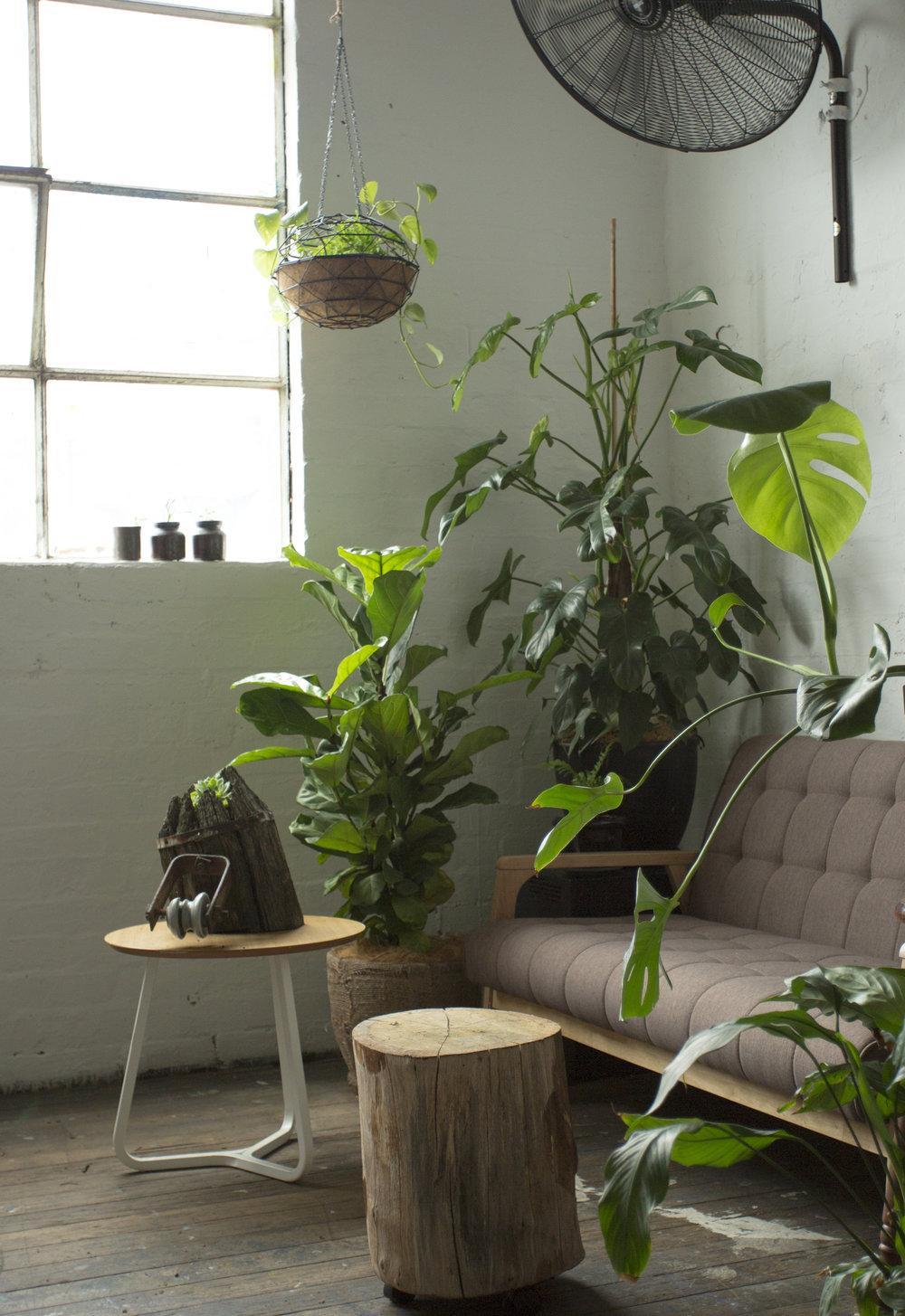 AKAS Landscape Architecture Indoor 1.jpg