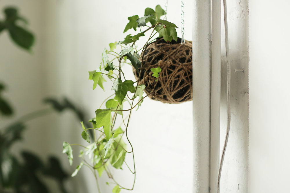 AKAS Landscape Architecture Indoor 4.jpg