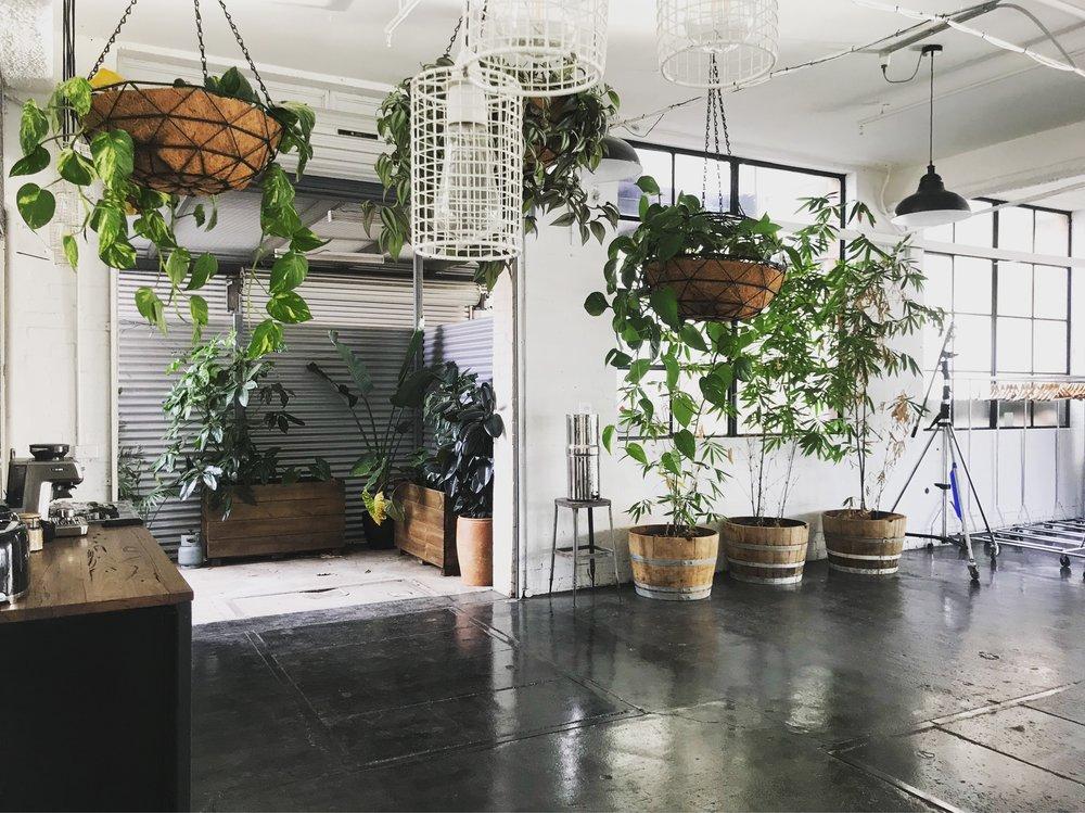 AKAS landscape architecture indoor.JPG