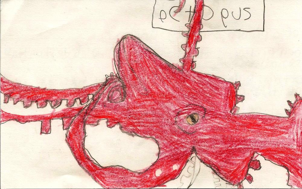 daniel_octo+squid.jpg