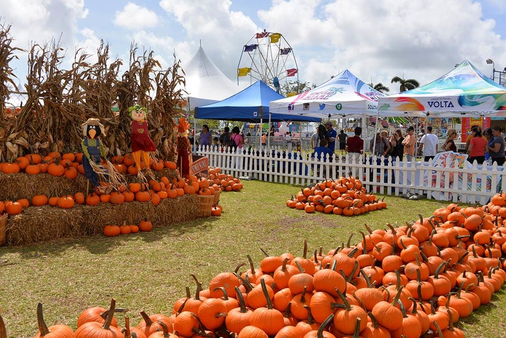 Foto Cortesía Coconut Grove Pumpkin Patch Festival