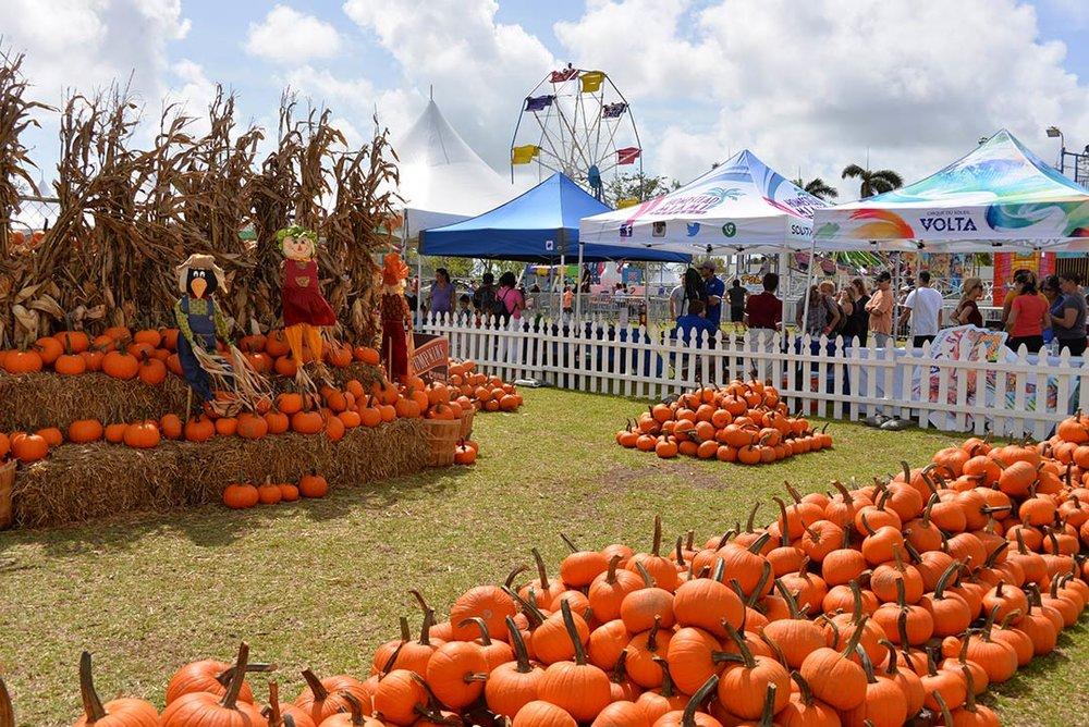 Foto Cortesía Coconut Grove Pumpkin Patch Festival