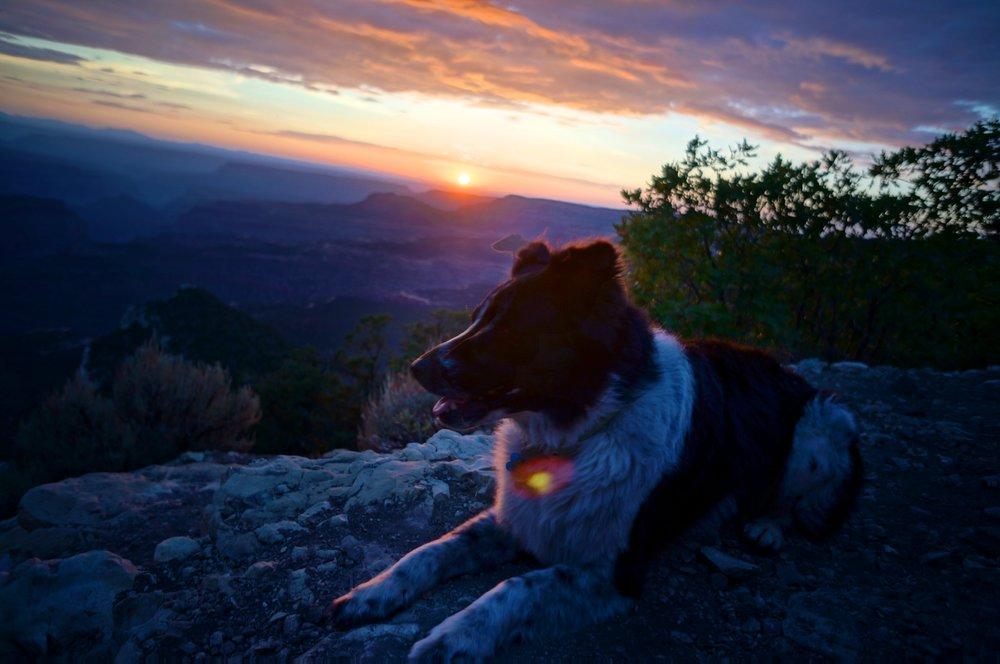 grand_canyon_north_rim_sunset_nugget.jpg