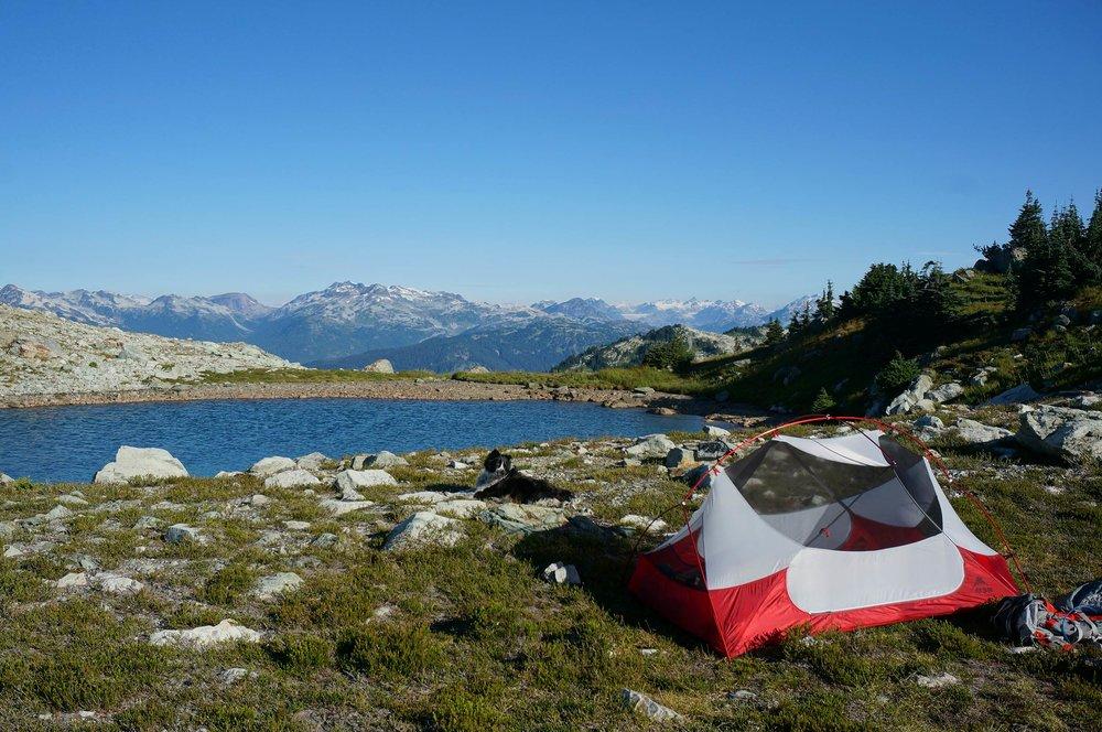 sproatt_alpine_trail_camping_msr_tent_sunrise1.jpg