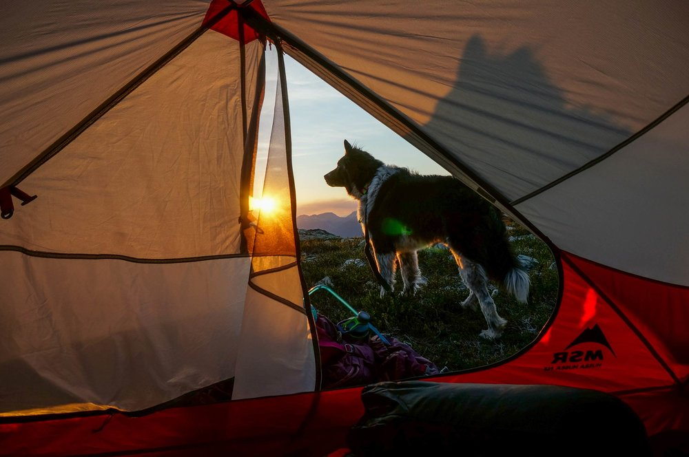 sproatt_alpine_trail_nugget_msr_tent_sunset.jpg