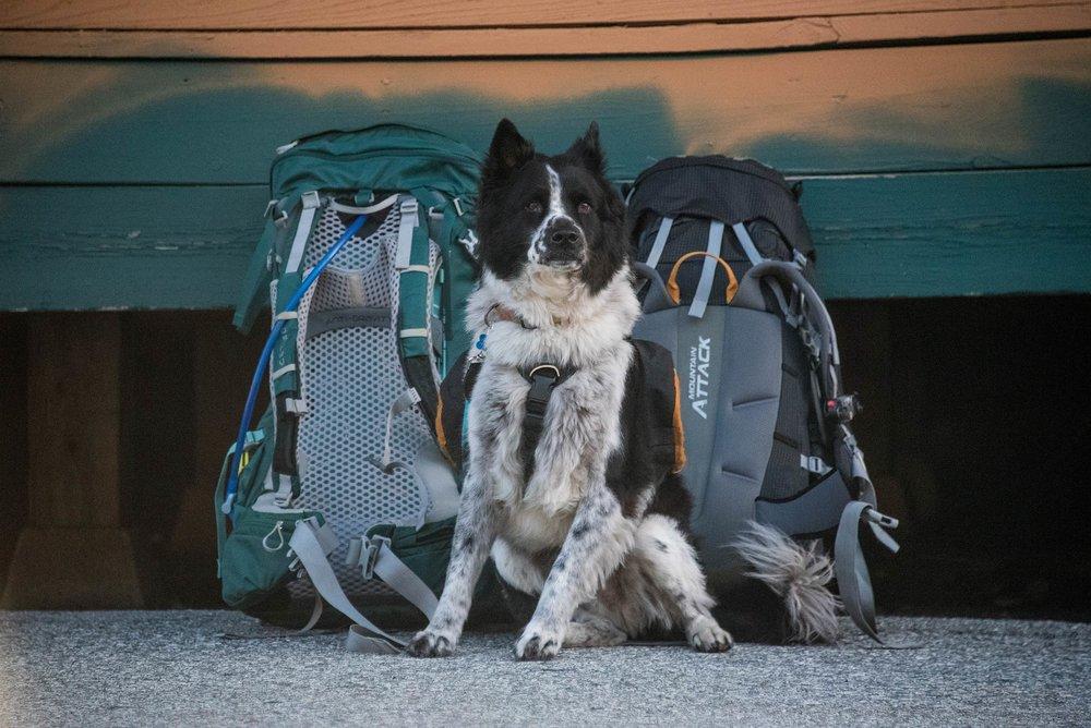 howe_sound_crest_trail_nugget_backpacks.jpg