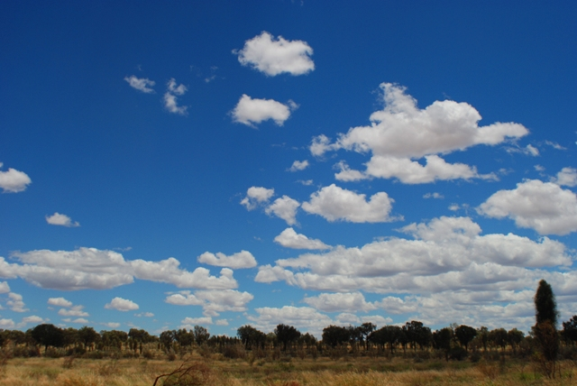 Landscape along the Stuart Highway