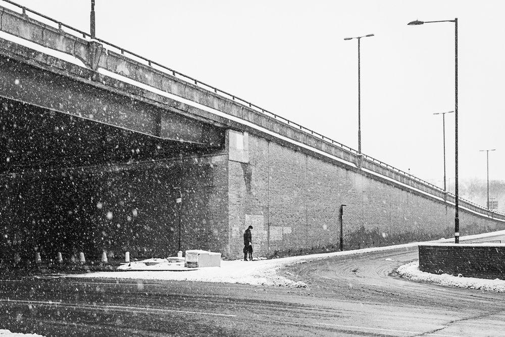 Spaghetti in the Snow.-1.JPG