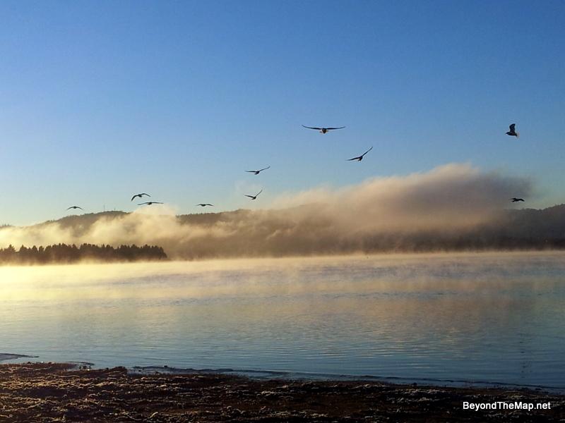 Misty Lake Jindabyne