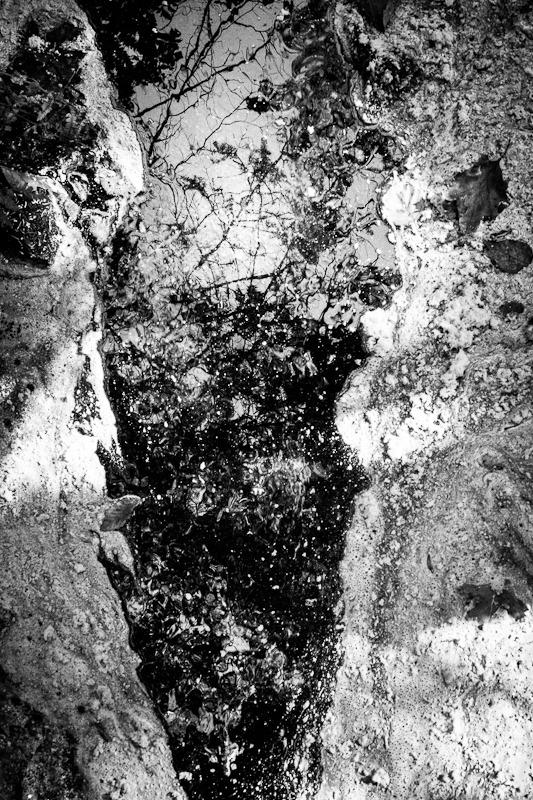 Stardust #004