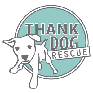 Thank Dog Rescue