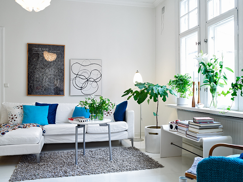 living-room-plants.jpg