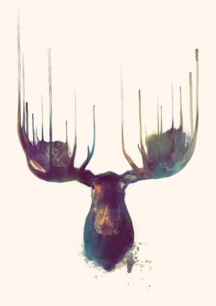 Moose_Web.jpg