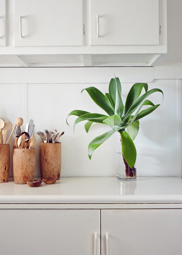 Cassie-kitchendetail.jpg