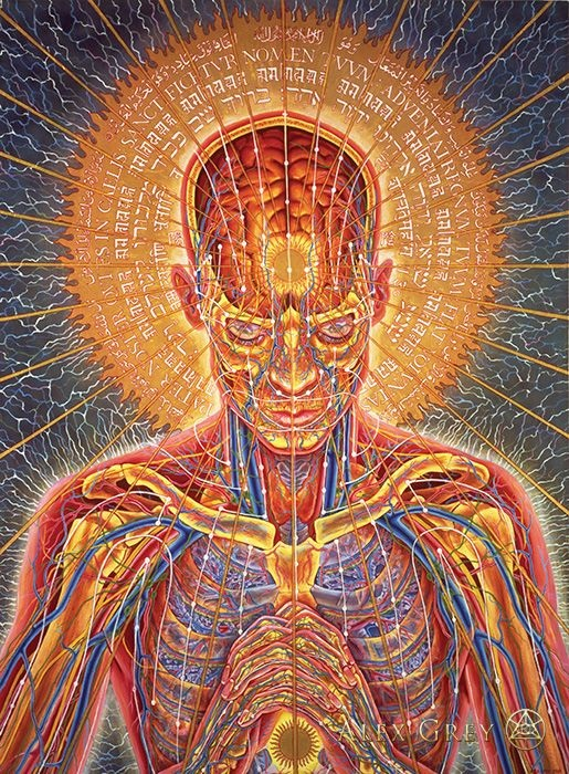 Alex Grey:  Sacred Mirrors