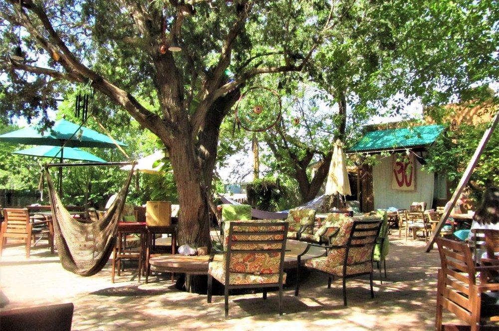 The Chocolatree edible gardens