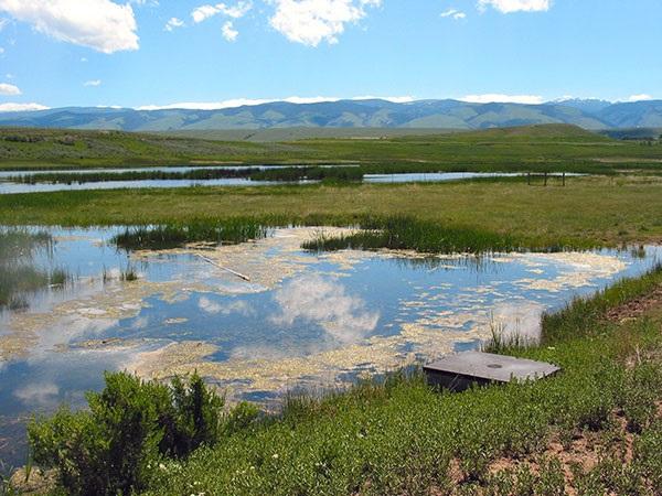 WY wetland.jpg