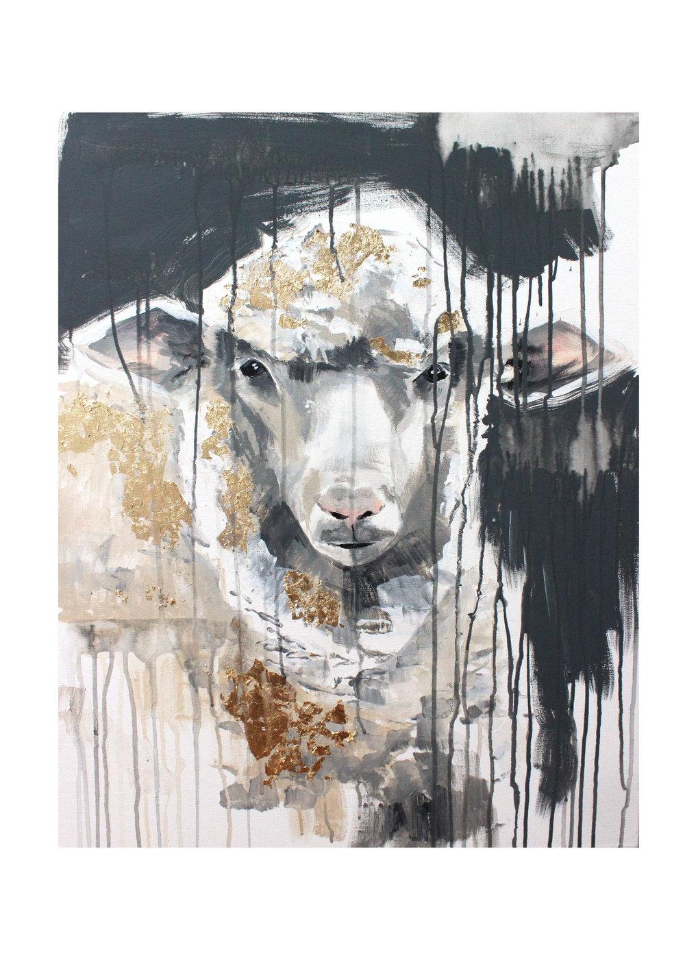 sheep+11.jpg