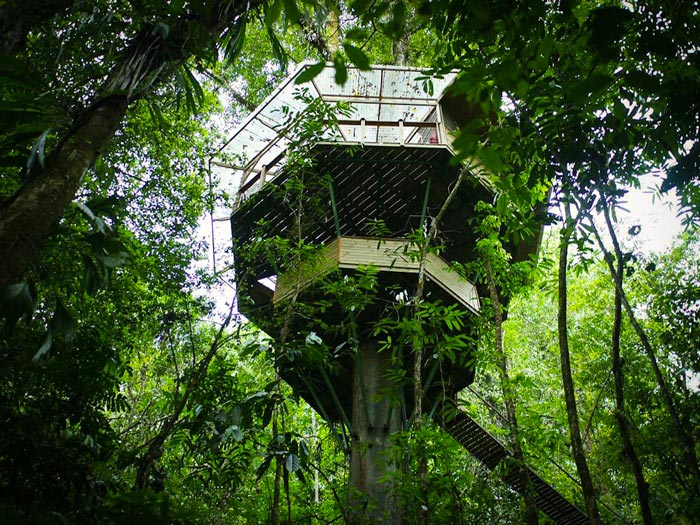 Finca Bellavista lies deep in the jungles of Costa Rica - a sustainable residential treehouse community focused on learning & conserving and living & growing with nature la Pura Vida en el cielo