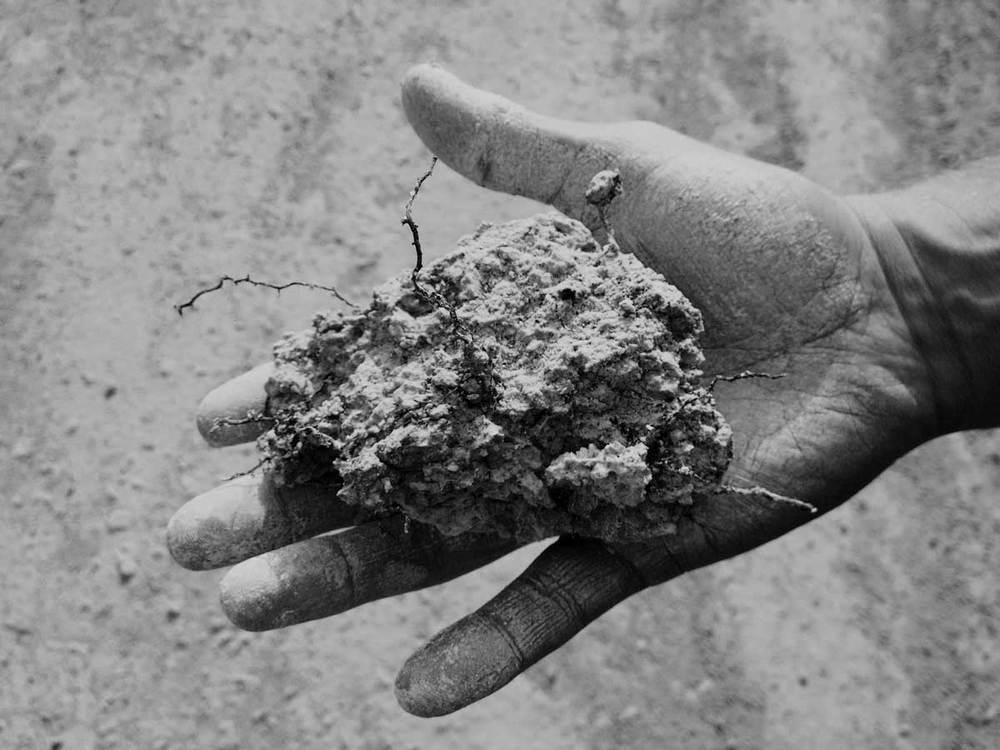digging_01.jpg