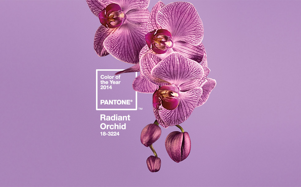 Pantone Color of the Yearn 2014