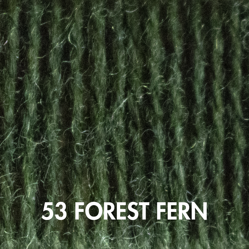 Copy of Copy of Forest Fern Fluffy Fingering merino yarn