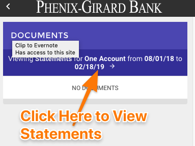 Step 8 - View Statements.png