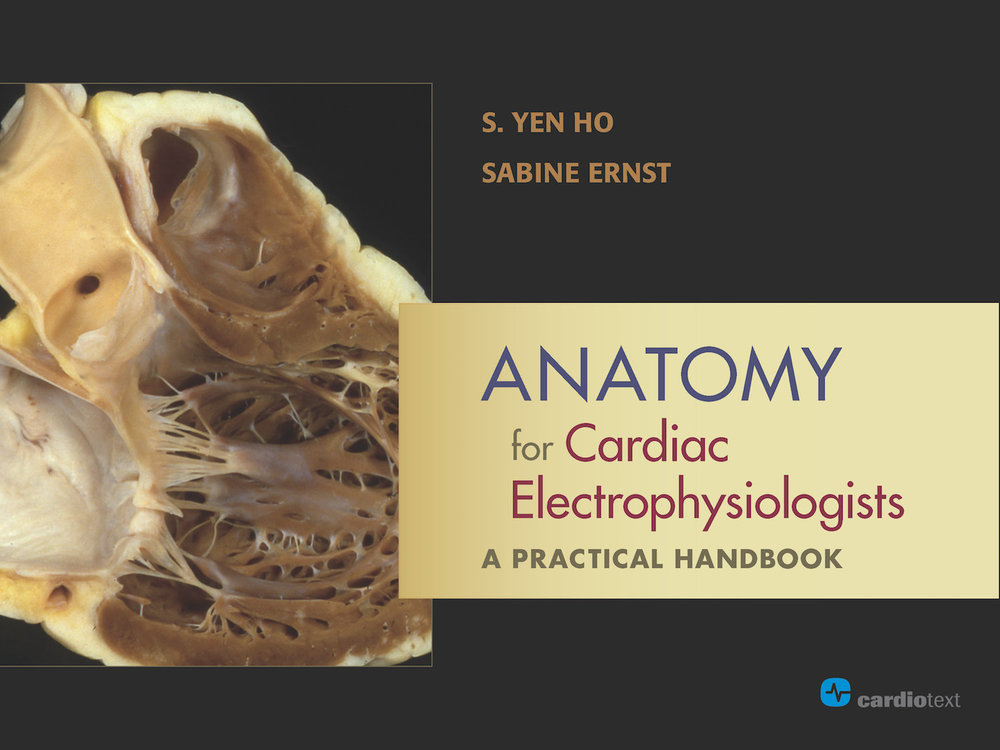 Anatomy for Cardiac Electrophysiologists: a Practical Handbook