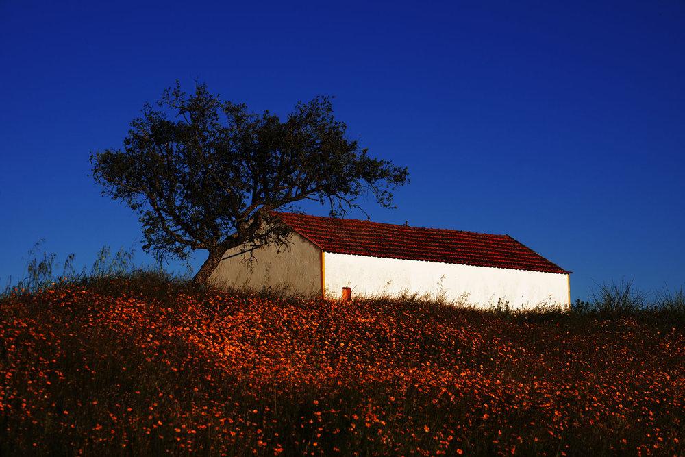 Casa Alentejana.
